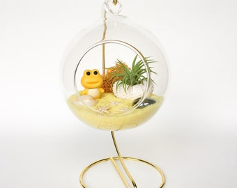 Yellow Frog Terrarium Kit