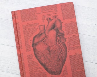 Understanding Disease Anatomical Heart Hardcover Not