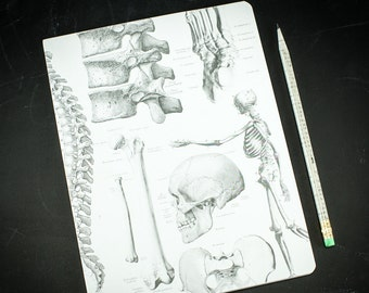 Skeleton Anatomy Softcover Notebook | Dot Grid Journal, Bullet Journal, Recycled Paper, Nursing Student, Skull, lab notebook, science