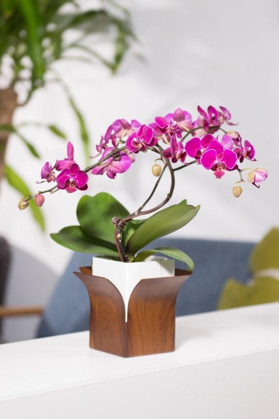 Iron Lotus Flower Vase Decor Flower Green Gift Creative Etsy