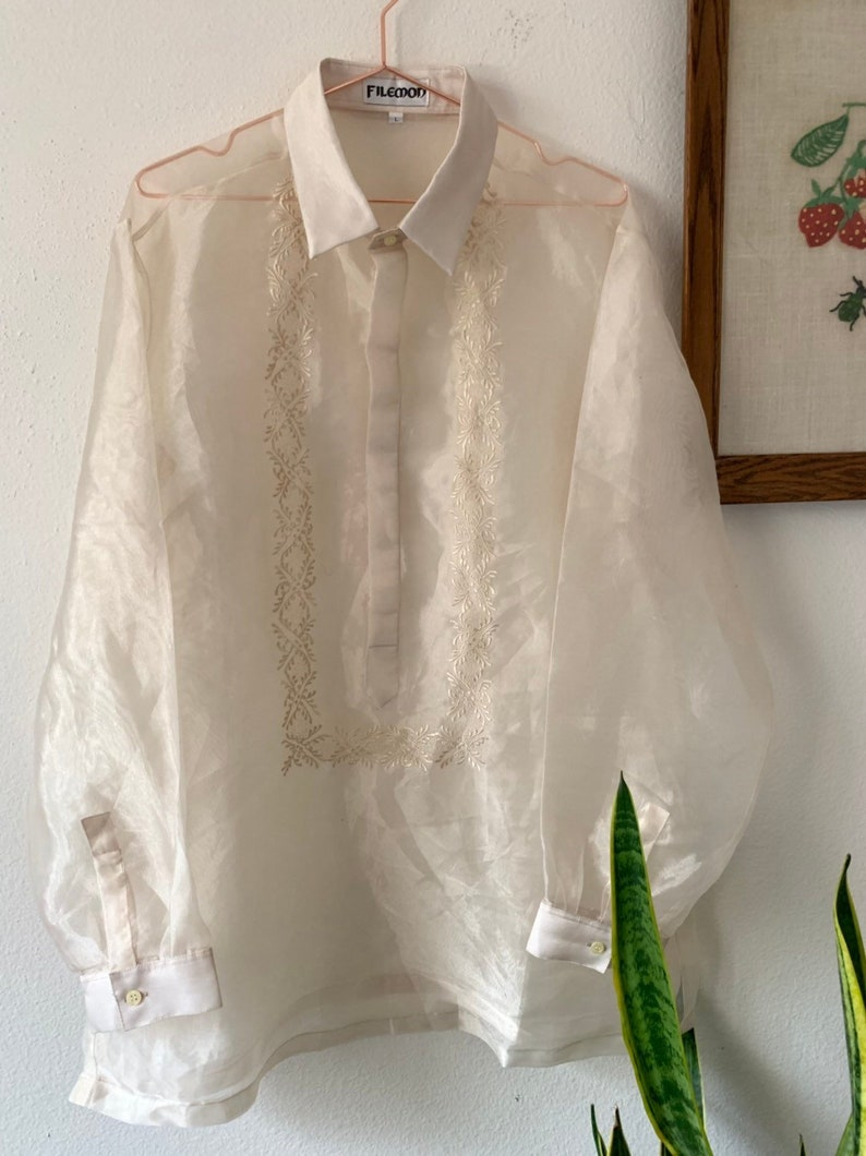 35521462f47a67 Vintage Champagne Sheer Organza Top