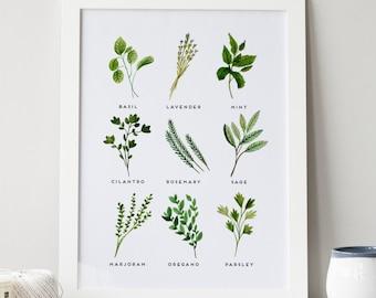 Herbs Print · 4x6 5x7 8x10 11x14 · Kitchen Art Print · Watercolor Herbs · Basil, Oregano, Sage, Cilantro Art · Botanical Art · Kitchen Decor
