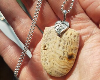 Hell's Canyon Petrified Wood Sterling Silver Pendant and Beaded Chain