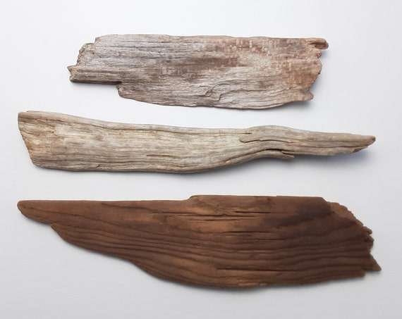 "3 Small, Irregular Driftwood Sign Blanks, 8.25-10.5"" Long"