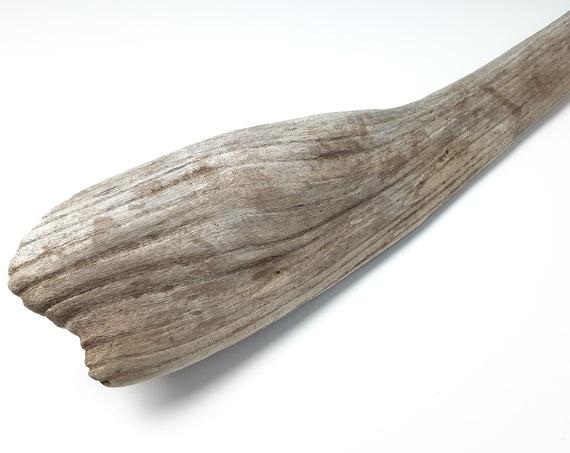 Wavy, Unique Bulbous Driftwood Log