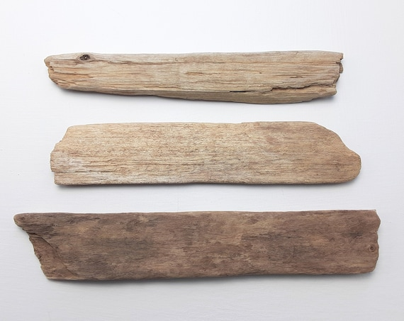 "3 Small, Weathered Driftwood Sign Blanks, 8-9.25"" Long"