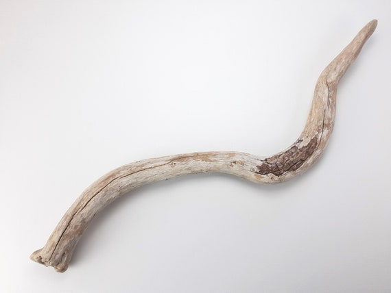"Swoopy Driftwood Wall Art, 35.5"" Long"