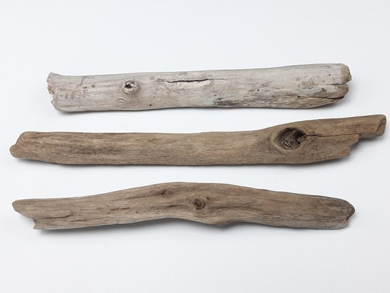 """3 Small Driftwood Branch Sections With Knots, 10-12"""" Long"""