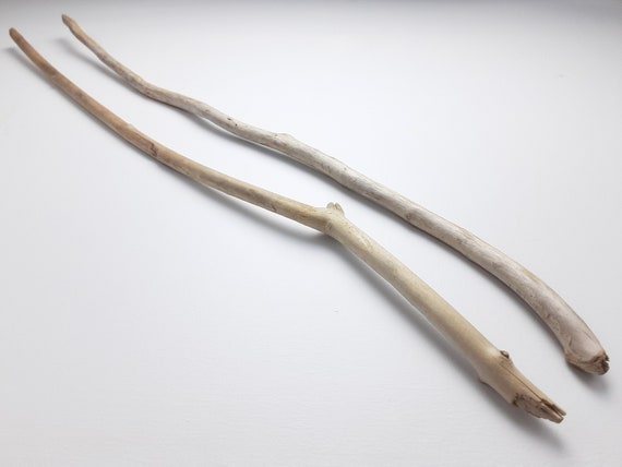 """2 Thin Driftwood Branches, 28"""" Long"""