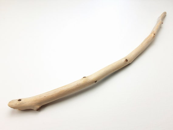 """Flawless, Curved Driftwood Branch, 19"""" Long"""