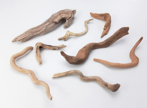 "8 Tiny, Gnarly Driftwood Pieces,  2.75"" - 7.5"" Long"