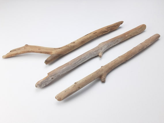 """3 Forked Driftwood Branches, 11.75-13"""" Long"""