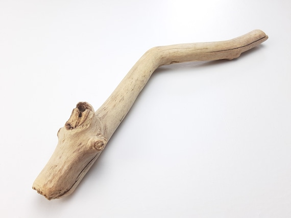 """Small, Angled Driftwood Branch, 11.75"""" Long"""