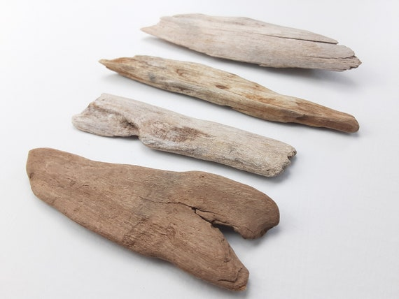 "4 Small, Natural Driftwood Sign Blanks, 5-6.5"" Long"