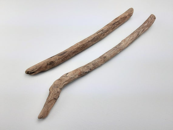"""2 Small Driftwood Branches, 10.5 - 12"""" Long"""
