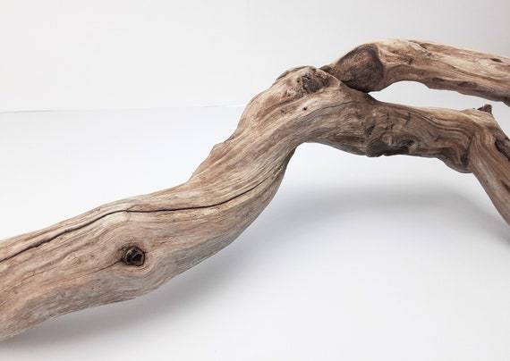 """Huge, Gnarly Driftwood Branch, 53"""" Long"""