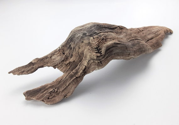"Small, Gnarly, Curved Driftwood Piece, 11.75"" Long"