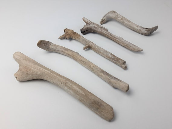 """5 Small Forked Driftwood Branches 5.5"""" - 8.5"""" Long"""