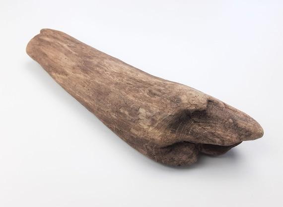 "Small, Rounded Driftwood Log Craft Base, 9.75"" Long"
