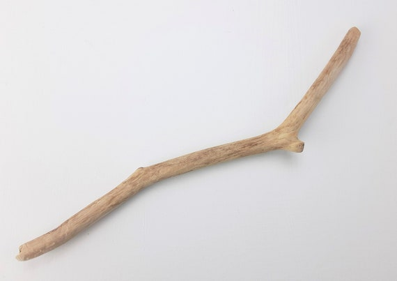 """Small, Crooked Driftwood Branch, 11.5"""" Long"""