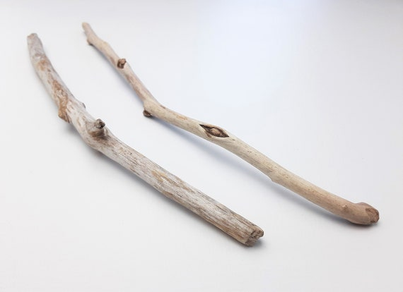"2 Small, Curved Driftwood Branches, 10.5-12"" Long"