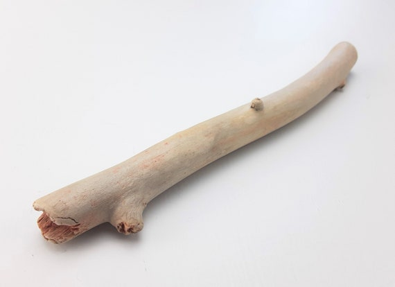 """Very Small, Slightly Curved Driftwood Branch, 7.5"""" Long"""
