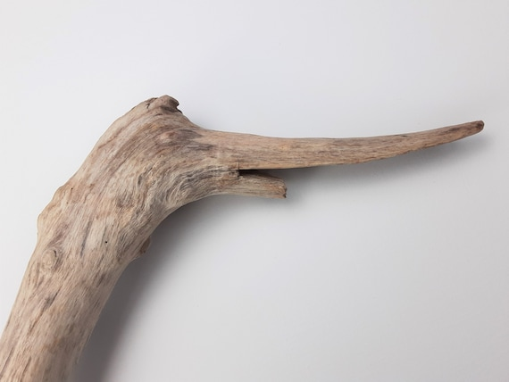 """Happy Duck Long, Angled Driftwood Branch, 33"""" Long"""