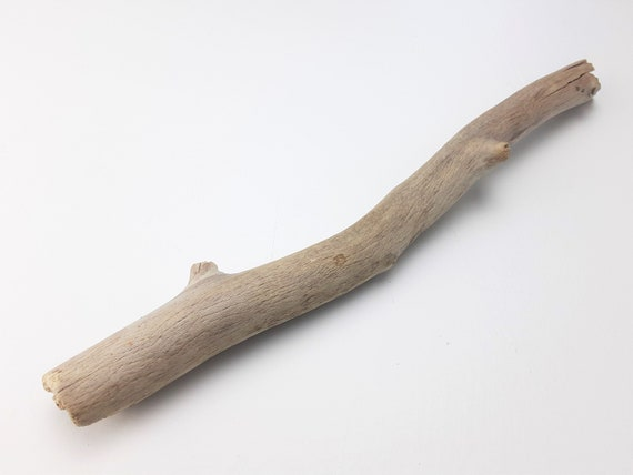 """Small Driftwood Branch With Amazing Wood Grain, 11"""" Long"""