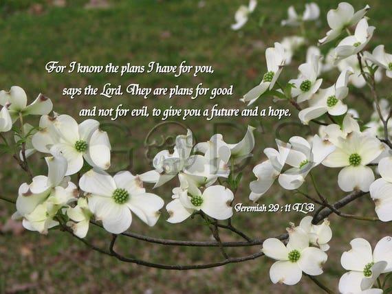 Jeremiah 29:11 KJV Scripture Picture Scripture Photo | Etsy