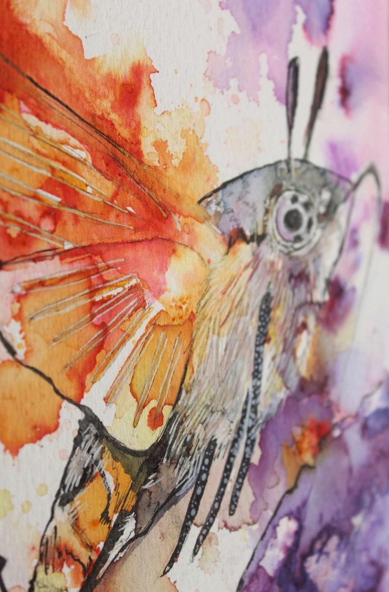 Humming Bird Moth image 0