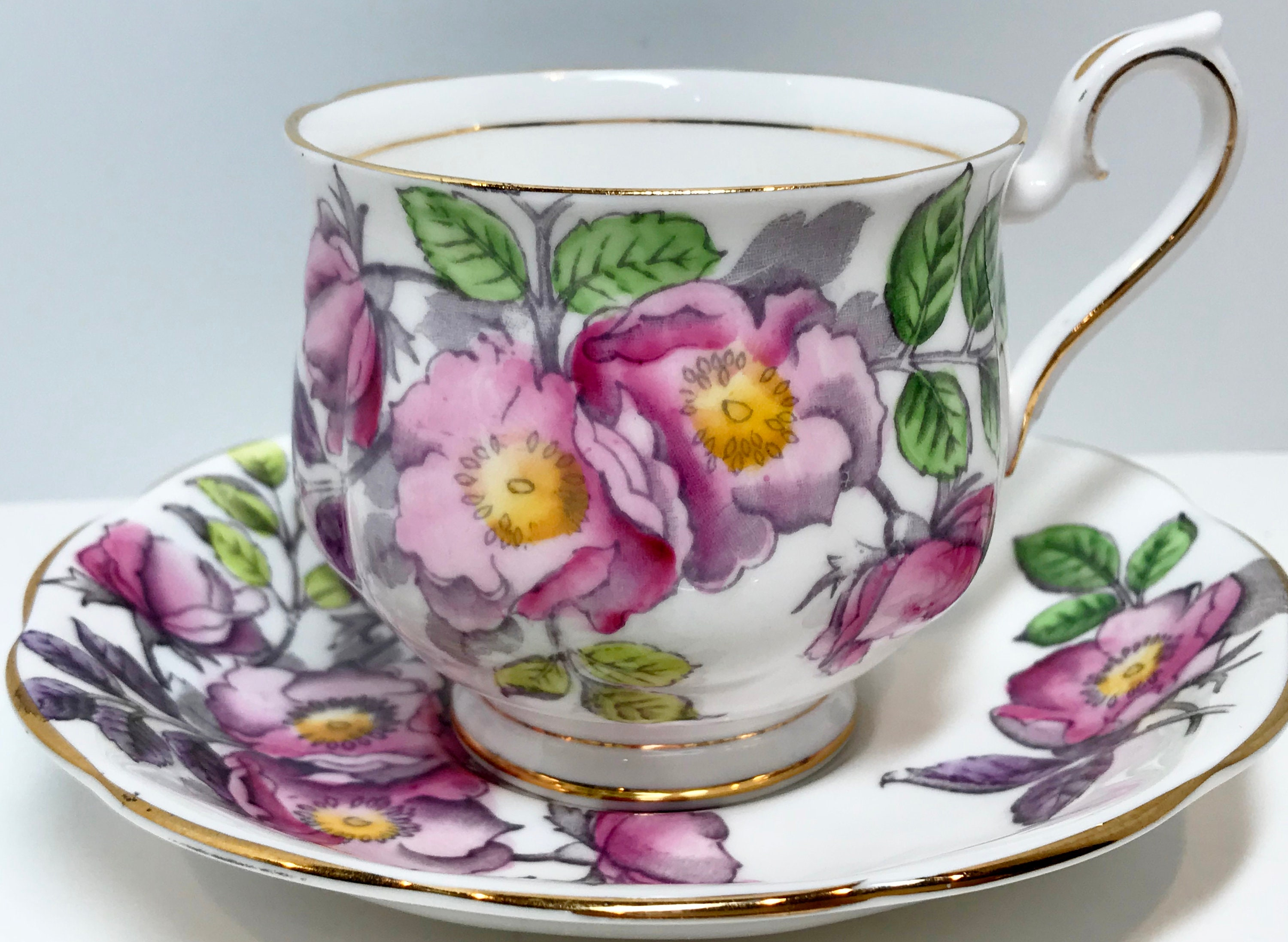 Royal Albert Tea Cup And Saucer Dog Rose Pattern Flower Of The