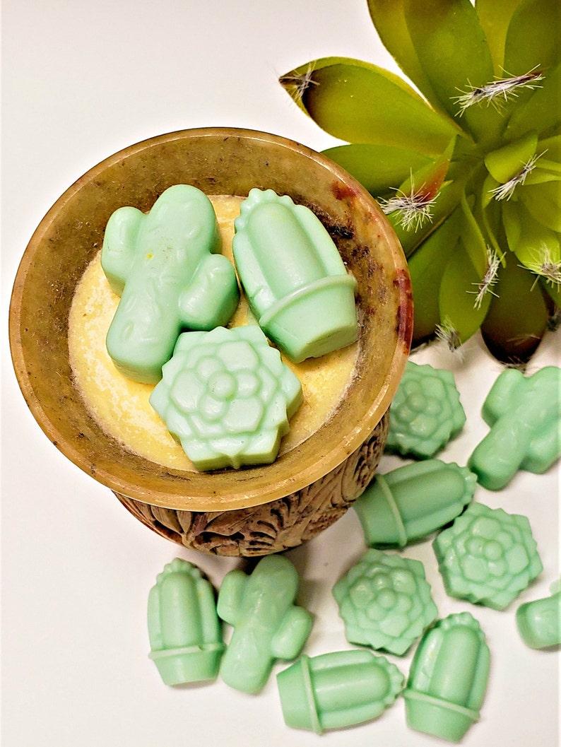 Cactus Flower Wax Melt Set of 15 Mini Cactus Wax Tarts for - Etsy
