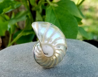 Sterling Silver Paisly Nautilus Shell Ring Size 9