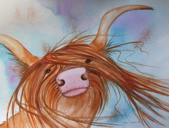Heeland Coo in the wind - Very high quality art print