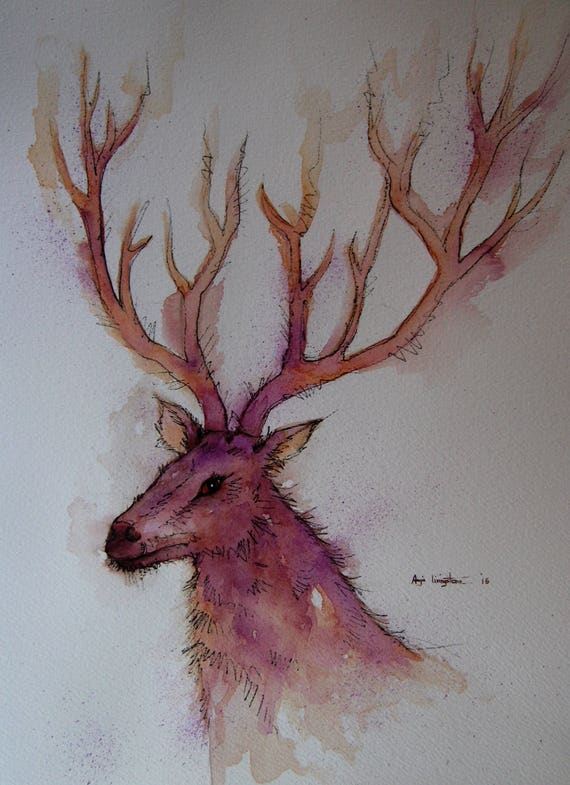 Stag High Quality A4 Photo Art Print