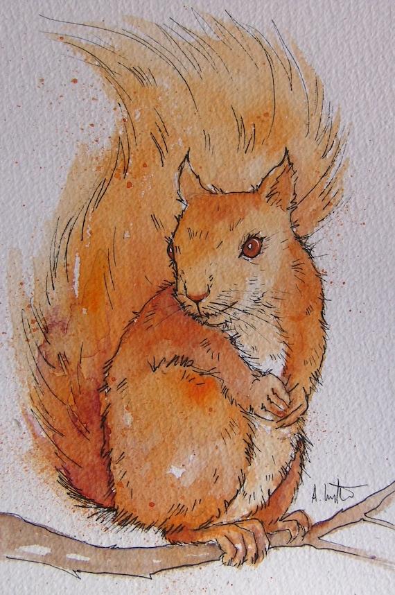 Squirrel High Quality A4 Print