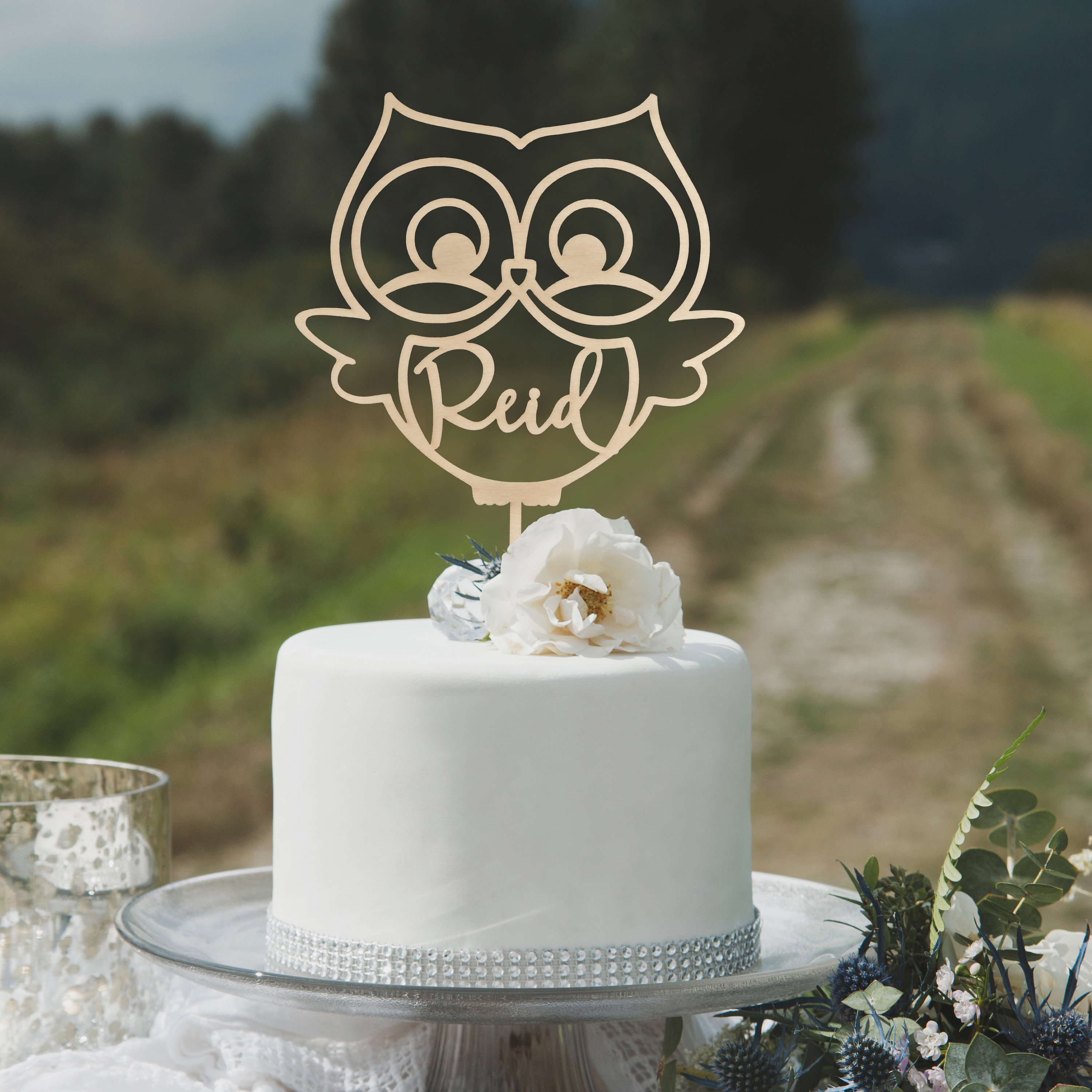 Owl Cake Topper Babys First Birthday