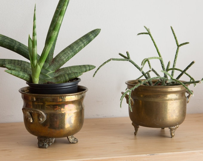 Vintage Brass Planters - Pair of Round Metal Brass Pots for Succulents, Cactus, Plants, Herbs, etc - Gold Coloured Bowls