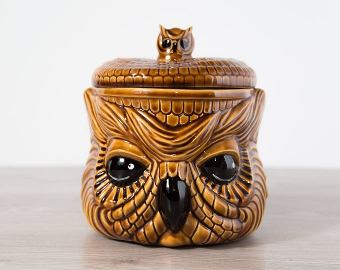 Vintage Owl Cookie Jar / Hand Painted Ceramic Evil Owl Kitchen Storage Container / 70's Kitsch