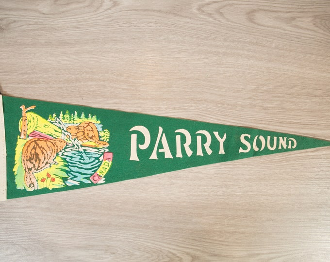 Parry Sound, Ontario Pennant - Vintage Canadian Felt Souvenir Hanging Triangle Shaped Wall Decor - Boys Room Wall Hanging