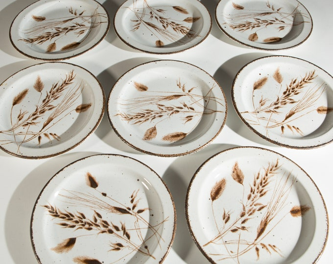 11 Stonehenge Wild Oats Plates - Small Rustic Cabin Cottage Dinner Plates - Speckled Pattern Brown Lip Mid Century Modern Dinnerware Set
