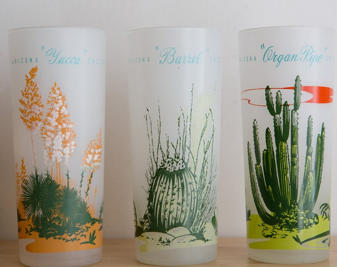 Cactus Cocktail Glasses - 3 Vintage Frosted Collins Glasses - 16oz Barware Cups with Barrel, Organ Pipe Cacti - Gin Tonic Cocktail Glassware