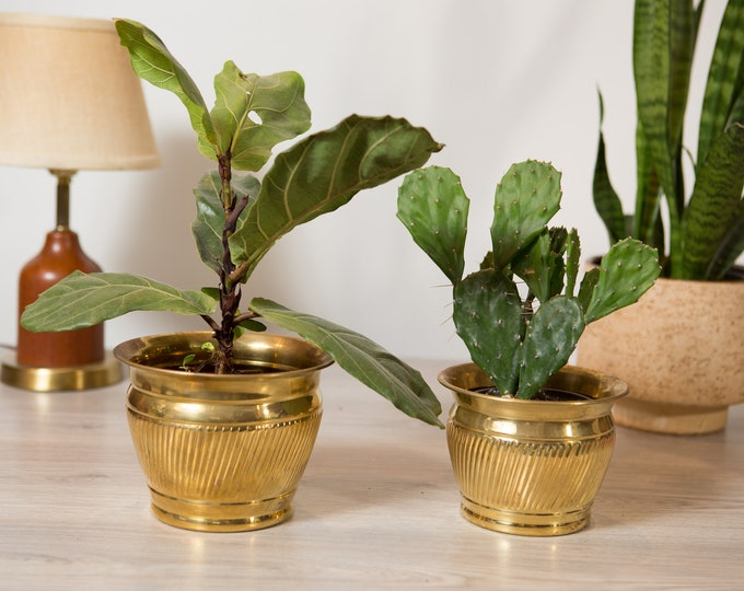 Vintage Brass Planters - Round Metal Brass Pots for Succulents, Cactus, Plants, Herbs, etc - Gold Coloured Bowls