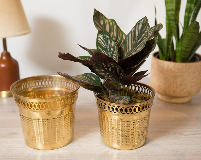 Vintage Brass Planters - Round Metal Bras Pots for Succulents, Cactus, Plants, Herbs, etc - Gold Coloured Bowls