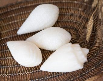 4 Stone Shells - Vintage Decorative Alabaster Carved Rock Seashells - Nautical Beach Decor