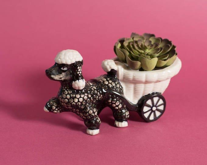 Vintage Poodle Planter / Hand Decorated Shafford Ceramic Mid Century Modern Kitsch Planter / Minimalist Scandinavian Danish Design