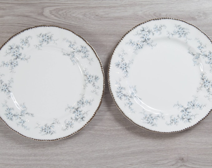 Paragon Plate - Pair Brides Choice Pattern Dinner Plates - Fine Bone China - Made in England - Collectible Vintage - Her Majesty the Queen