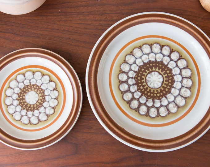 Vintage Dinner Plate and Side Plate /Baycrest Stoneware Pamona Plates - Made in Japan