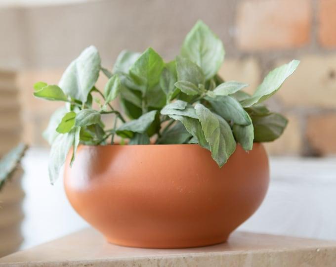 Terracotta Ceramic Planter - Saucer shaped Pot - Vintage Earthtone Plant Pot - Boho Modern Decor for Succulents, Cacti