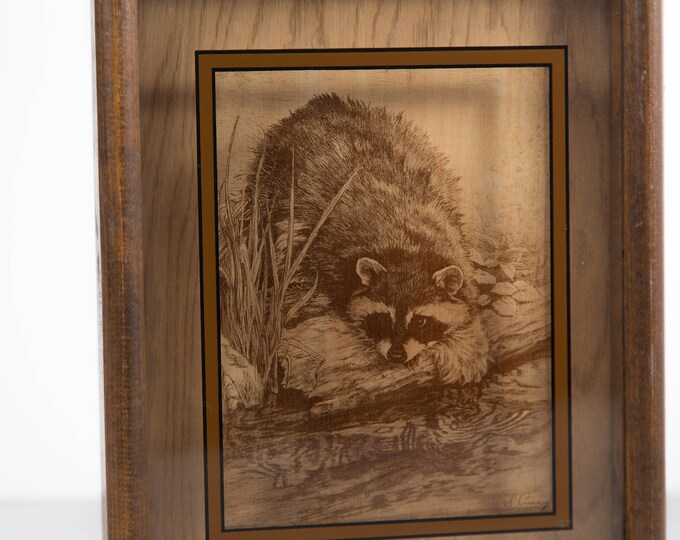 Raccoon Framed Art / Glass Art with Shadowbox / Wood Frame with Wild Animal Raccoon Decal